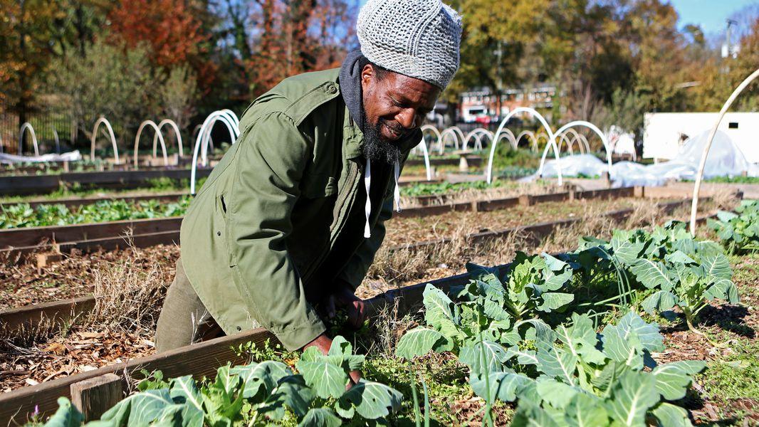 Atlanta's largest urban farm becomes a landowner
